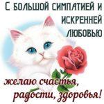 10fe6453cde66d6230062ab1e29e229d